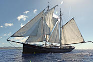 Wylde Swan Exclusive Tall Ship Photography by Jean Jarreau